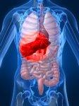 Гепатиты и опасности, которые они таят